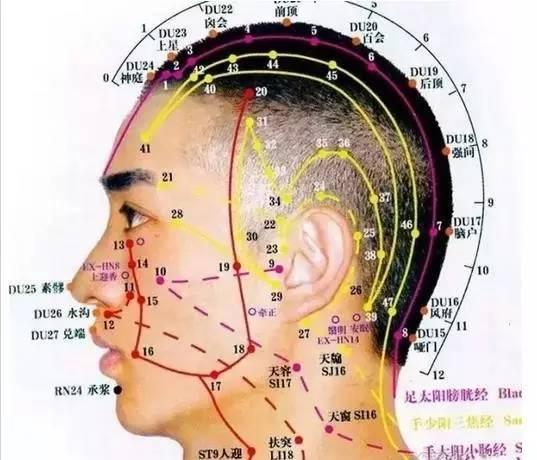 秀丝顿头疗作用