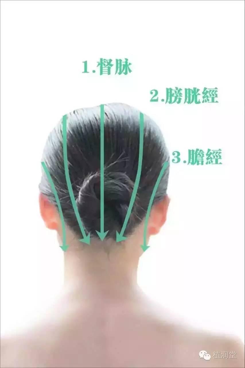全息头疗作用